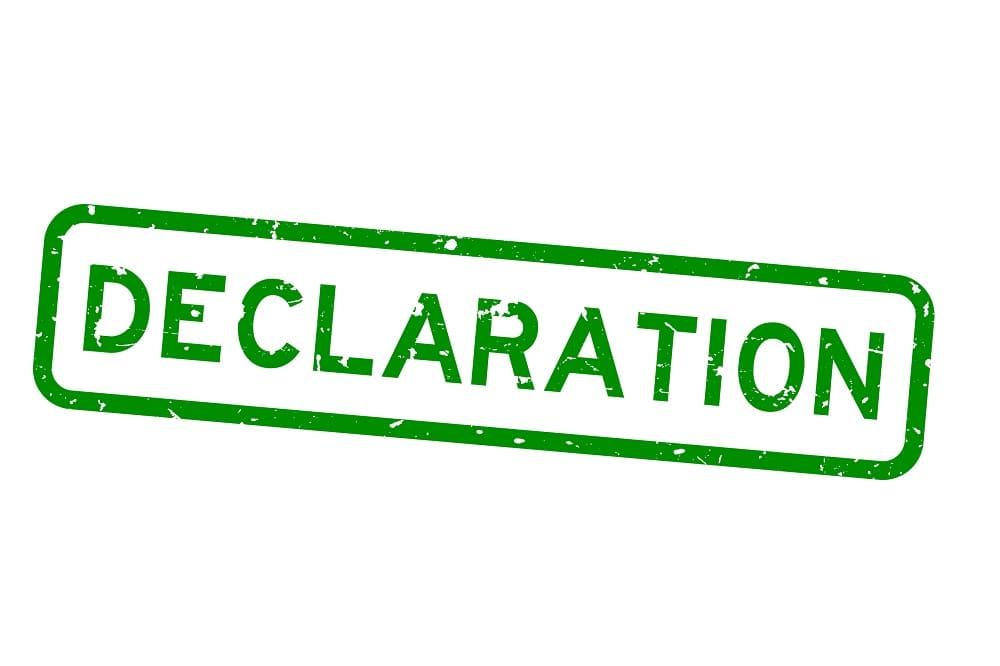 ikona deklaracji